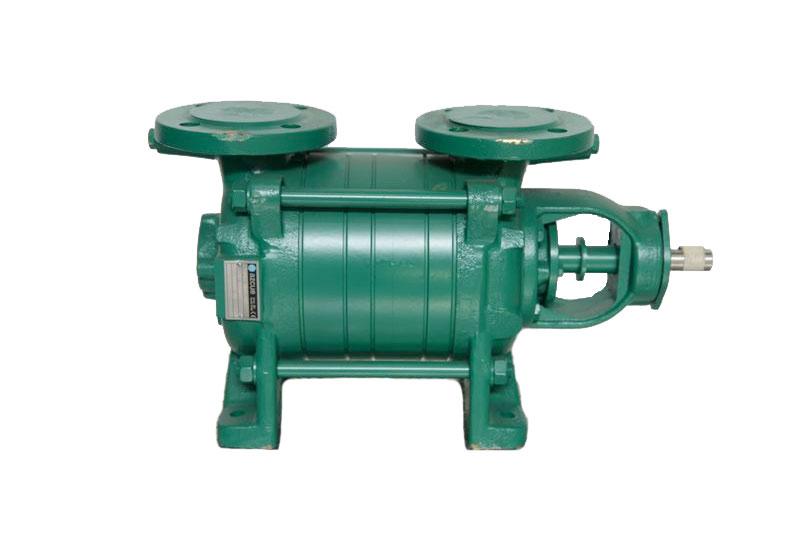 Azcue Pumps